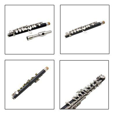 LADE C Major Piccolo High Quality Instrument Gift for Music LoverBrass<br>LADE C Major Piccolo High Quality Instrument Gift for Music Lover<br><br>Package Contents: 1 x Piccolo, 1 x Cleaning Cloth, 1 x Screwdriver, 1 x Instruction Book, 1 x 1 x Cleaning Rod, 1 x Bag<br>Package size: 32.500 x 16.500 x 18.000 cm / 12.795 x 6.496 x 7.087 inches<br>Package weight: 0.520 kg<br>Tune Material: Copper