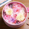 21Y022 Permanent Fresh Flower Valentine's Day Gift Romantic Present - COLORMIX