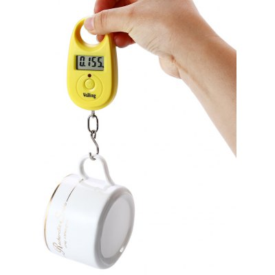 WH-A11 Fish Hook Weigh Digital Scale