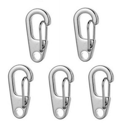 D2 5pcs Zinc Alloy Quick Release Buckle Carabiner Key Chain