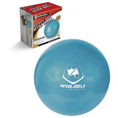 WINMAX WMF09945 Gym Ball