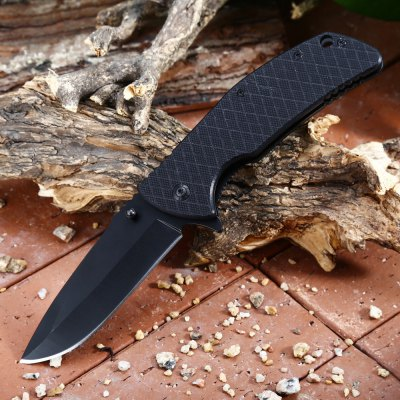 PA67 Liner Lock Folding Knife with Pocket Clip