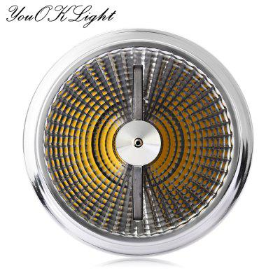 YouOKLight LED Down Light