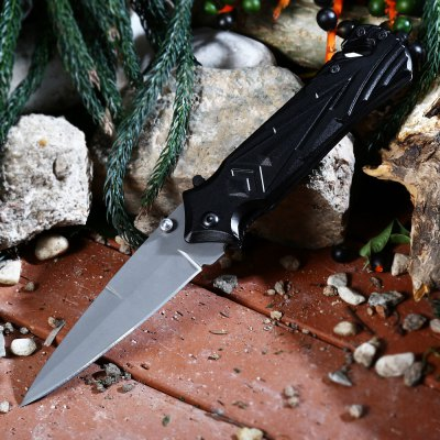 PA47 Liner Lock Folding Knife with Semi-auto Open Design