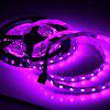 DIY 5m DC 12V 72W SMD5050 300 LEDs RGB Light Strip for Indoor Decoration - RGB COLOR