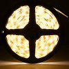 2PCS 1.5m SMD3528 60 LEDs Soft Tape LED Bed Light - BLACK