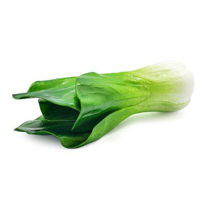 Realistic Shanghai Bok Choy PU Foam Squishy ToySquishy toys<br>Realistic Shanghai Bok Choy PU Foam Squishy Toy<br><br>Color: Green<br>Materials: PU<br>Package Content: 1 x Squishy Toy<br>Package Dimension: 27.00 x 10.00 x 10.00 cm / 10.63 x 3.94 x 3.94 inches<br>Package Weights: 105g<br>Pattern Type: Vegetable<br>Product Dimension: 25.00 x 8.00 x 8.00 cm / 9.84 x 3.15 x 3.15 inches<br>Product Weights: 70g<br>Products Type: Squishy Toy<br>Use: Home Decoration