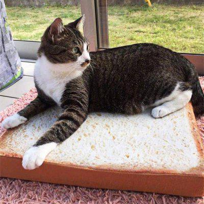 Pet Bed Cat Toast-shaped Mat Sponge Cushion