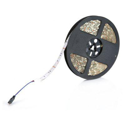 5M RGB IP65 5050 SMD 300 LED a Striscia 220V