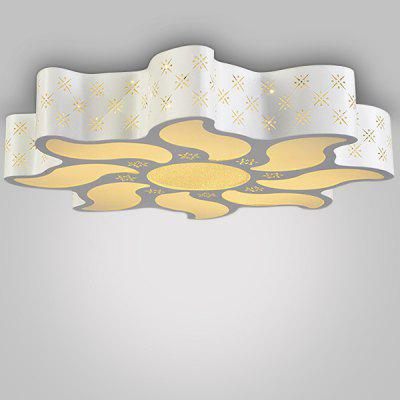Simple Special-shaped Acrylic LED Ceiling Light 220V