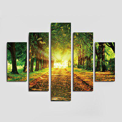 5PCS Avenues Printing Canvas Wall Decoration
