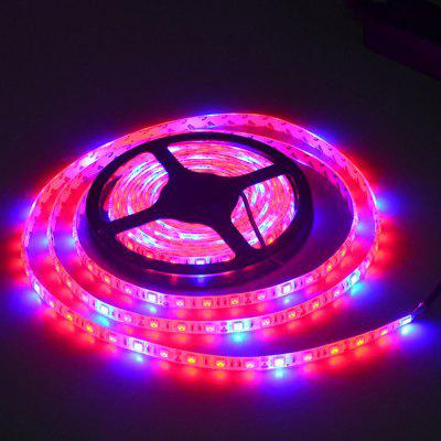 JIAWEN 300 - 5050 SMD LED Plant Growing Light Belt DC12VLED Strips<br>JIAWEN 300 - 5050 SMD LED Plant Growing Light Belt DC12V<br><br>Brand: JIAWEN<br>CCT/Wavelength: 635-700nm<br>Features: IP-65, Waterproof<br>Input Voltage: DC 12V<br>Length: 5M<br>Material: PBC, ABS<br>Number of LEDs: 300<br>Optional Light Color: Blue,Red<br>Package Contents: 1 x LED Strip Light<br>Package size (L x W x H): 18.00 x 18.00 x 8.00 cm / 7.09 x 7.09 x 3.15 inches<br>Package weight: 0.5080 kg<br>Product size (L x W x H): 500.00 x 10.00 x 0.30 cm / 196.85 x 3.94 x 0.12 inches<br>Product weight: 0.4240 kg<br>Rated Power (W): 30W<br>SMD: 5050<br>Type: LED Strip<br>Waterproof: Yes