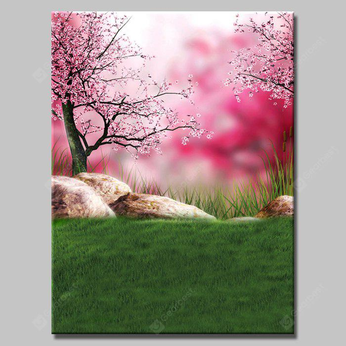NM - 456 Outdoor Photography Background Cloth
