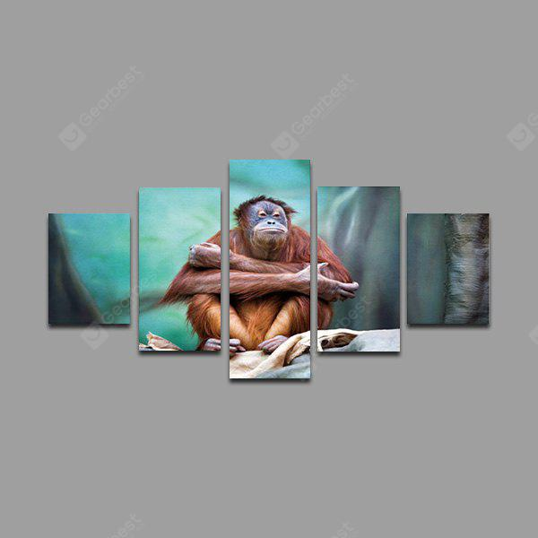 5PCS Animal Orangutan Printed Painting Canvas Print