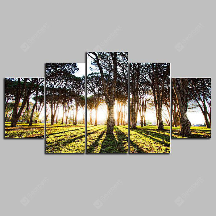 5PCS YSDAFEN Forest Sunlight Printed Painting Canvas Print