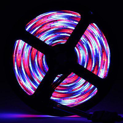 HML 5M 24W RGB IP65 2835 SMD 300 LEDs Strip Light