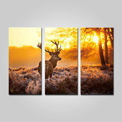 JOY ART Deer in Forest Print Painting Modern Framed Canvas Picture for Wall Decor 3PCS