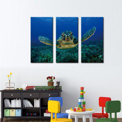 Buy COLORMIX JOY ART Turtle Pattern Stretched Canvas Print 3PCS for $43.37 in GearBest store