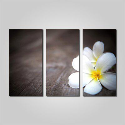 Buy COLORMIX JOY ART White Plumeria Print Framed Canvas Painting 3PCS for $44.23 in GearBest store