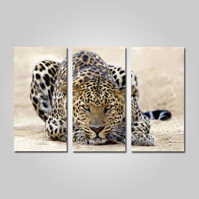 Buy COLORMIX JOY ART Leopard Animal Print Framed Canvas Painting 3PCS for $44.23 in GearBest store