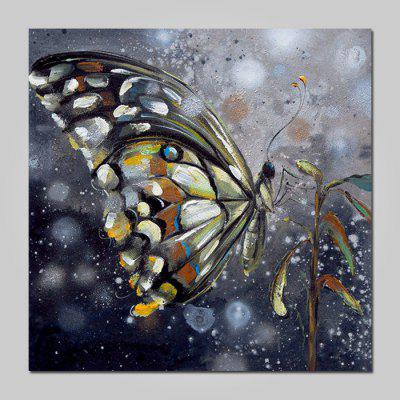Buy COLORMIX Mintura Oil Painting Hand-painted Butterfly Unframed for $53.90 in GearBest store