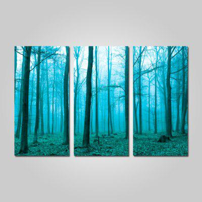 Buy COLORMIX JOY ART Forest Print Framed Canvas Painting 3PCS for $44.23 in GearBest store