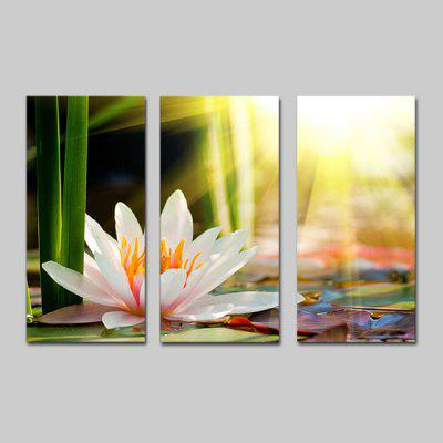 Buy COLORMIX JOY ART Canvas Hanging Print Lotus Framed Artwork 3PCS for $43.37 in GearBest store