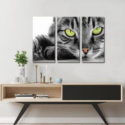 JOY ART 0117 Stretched Canvas Cat with Green Eyes Print 3PCSPrints<br>JOY ART 0117 Stretched Canvas Cat with Green Eyes Print 3PCS<br><br>Brand: JOY ART<br>Craft: Print<br>Form: Three Panels<br>Material: Canvas<br>Package Contents: 3 x Print<br>Package size (L x W x H): 41.00 x 5.00 x 5.00 cm / 16.14 x 1.97 x 1.97 inches<br>Package weight: 0.2700 kg<br>Painting: Without Inner Frame<br>Product weight: 0.2300 kg<br>Shape: Vertical<br>Style: Modern<br>Subjects: Animal<br>Suitable Space: Bedroom,Living Room