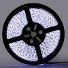 5m LED Strip Light Set DC12V - WHITE