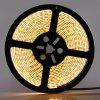 5m LED Strip Light Set 48W 600 LEDs 3528 SMD DC12V - WARM WHITE LIGHT