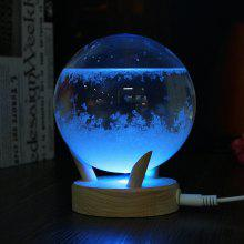 USB LED Weather Forecast Storm Glass Crystal Wishing Ball