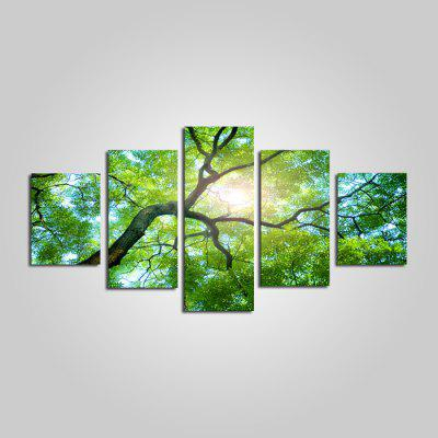 Modern Beautiful Tree Print Frameless Canvas Painting 5PCS
