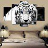 Modern Canvas Prints Tiger Hanging Wall Art 5PCS - COLORMIX