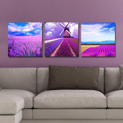 DYC 10130 Lavender Landscape Canvas Print Wall 3pcsPrints<br>DYC 10130 Lavender Landscape Canvas Print Wall 3pcs<br><br>Brand: DYC<br>Craft: Print<br>Form: Three Panels<br>Material: Canvas<br>Package Contents: 3 x Print<br>Package size (L x W x H): 34.00 x 34.00 x 8.00 cm / 13.39 x 13.39 x 3.15 inches<br>Package weight: 1.1000 kg<br>Painting: Include Inner Frame<br>Product weight: 0.7000 kg<br>Shape: Vertical<br>Style: Landscape<br>Subjects: Landscape<br>Suitable Space: Bedroom,Living Room