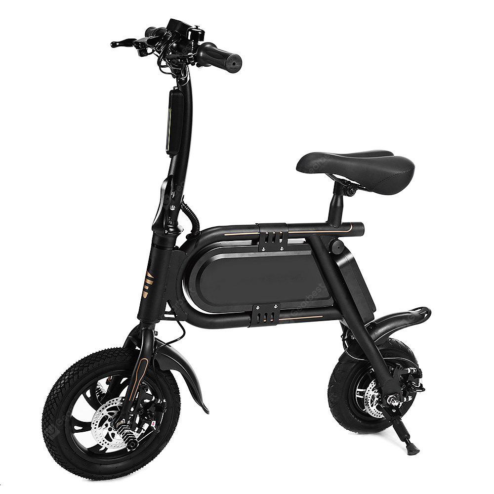Doublehunter P10 Mini Folding Electric Bike E Bike 442