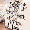 Creative Photo Tree 3D Wall Stickers - COLORMIX
