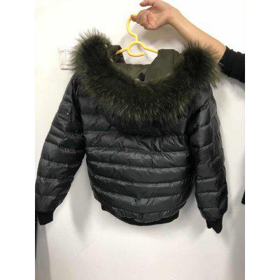 Racoon Dog Fur Down JacketDown Jackets &amp; Coats<br>Racoon Dog Fur Down Jacket<br><br>Closure Type: Zipper<br>Clothes Type: Down Coat<br>Collar: Hooded<br>Embellishment: Fur collar,Printing<br>Filling: White Duck Down<br>Materials: Polyester<br>Occasion: Daily Use, Going Out, Holiday, Work<br>Package Content: 1 x Jacket<br>Package Dimension: 50.00 x 35.00 x 2.00 cm / 19.69 x 13.78 x 0.79 inches<br>Package weight: 1.5200 kg<br>Pattern Type: Letter<br>Product weight: 1.5000 kg<br>Seasons: Winter<br>Shirt Length: Short<br>Sleeve Length: Long Sleeves<br>Style: Casual<br>Thickness: Thickening