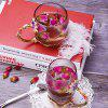 Luxury Enamel Glass Tea Cup Heat-resistant Coffee Mug - COLORMIX