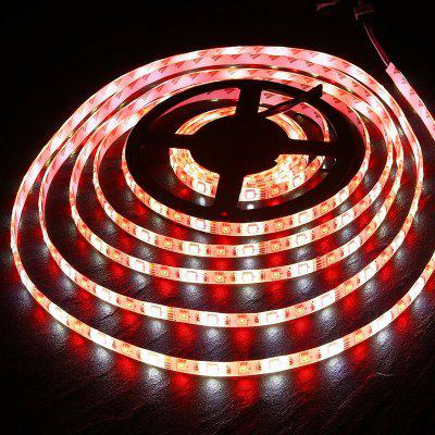LED Strip Light RGB + White / RGB + Warm White Non Waterproof / Waterproof 5050 300LEDS / Roll Dc 12 V
