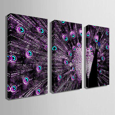 E - HOME Canvas Prints Peacock Hanging Wall Art 3PCSPrints<br>E - HOME Canvas Prints Peacock Hanging Wall Art 3PCS<br><br>Brand: E-HOME<br>Craft: Print<br>Form: Three Panels<br>Material: Canvas<br>Package Contents: 3 x Print<br>Package size (L x W x H): 40.00 x 5.00 x 5.00 cm / 15.75 x 1.97 x 1.97 inches<br>Package weight: 0.3300 kg<br>Painting: Without Inner Frame<br>Product size (L x W x H): 30.00 x 60.00 x 0.20 cm / 11.81 x 23.62 x 0.08 inches<br>Product weight: 0.2100 kg<br>Shape: Vertical<br>Style: Modern<br>Subjects: Animal<br>Suitable Space: Living Room