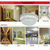 JIAWEN 5W Cool White LED Voice-Control Ceiling Light Corridor Ceiling Light (AC 220V) - SNOW WHITE