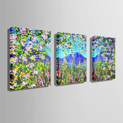 E - HOME Unframed Flower Rattan Canvas Print 3pcsPrints<br>E - HOME Unframed Flower Rattan Canvas Print 3pcs<br><br>Brand: E-HOME<br>Craft: Print<br>Form: Three Panels<br>Material: Canvas<br>Package Contents: 3 x Print<br>Package size (L x W x H): 45.00 x 5.00 x 5.00 cm / 17.72 x 1.97 x 1.97 inches<br>Package weight: 0.3000 kg<br>Painting: Without Inner Frame<br>Product size (L x W x H): 35.00 x 50.00 x 0.20 cm / 13.78 x 19.69 x 0.08 inches<br>Product weight: 0.1800 kg<br>Shape: Vertical<br>Style: Modern/Contemporary<br>Subjects: Flower<br>Suitable Space: Bedroom,Dining Room,Living Room