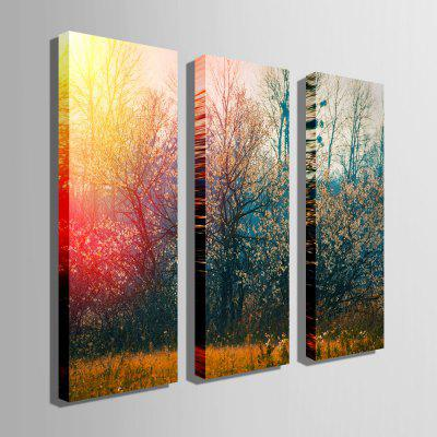 E - HOME Unframed Forest Canvas Print 3pcsPrints<br>E - HOME Unframed Forest Canvas Print 3pcs<br><br>Brand: E-HOME<br>Craft: Print<br>Form: Three Panels<br>Material: Canvas<br>Package Contents: 3 x Print<br>Package size (L x W x H): 34.00 x 5.00 x 5.00 cm / 13.39 x 1.97 x 1.97 inches<br>Package weight: 0.3000 kg<br>Painting: Without Inner Frame<br>Product size (L x W x H): 24.00 x 70.00 x 0.20 cm / 9.45 x 27.56 x 0.08 inches<br>Product weight: 0.1800 kg<br>Shape: Vertical<br>Style: Modern/Contemporary<br>Subjects: Landscape<br>Suitable Space: Bedroom,Dining Room,Living Room