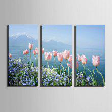 E-HOME Canvas Tulip Hanging Wall Art coupons