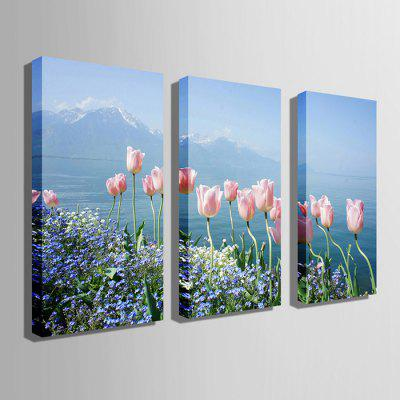 E - HOME Canvas Prints Tulip Hanging Wall Art 3PCSPrints<br>E - HOME Canvas Prints Tulip Hanging Wall Art 3PCS<br><br>Brand: E-HOME<br>Craft: Print<br>Form: Three Panels<br>Material: Canvas<br>Package Contents: 3 x Print<br>Package size (L x W x H): 50.00 x 5.00 x 5.00 cm / 19.69 x 1.97 x 1.97 inches<br>Package weight: 0.4300 kg<br>Painting: Without Inner Frame<br>Product size (L x W x H): 40.00 x 80.00 x 0.20 cm / 15.75 x 31.5 x 0.08 inches<br>Product weight: 0.3000 kg<br>Shape: Vertical<br>Style: Modern<br>Subjects: Flower<br>Suitable Space: Living Room