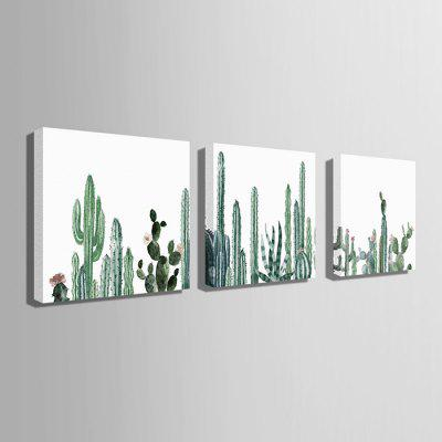 E - HOME Cactus Design Print Canvas Wall Painting 3pcsPrints<br>E - HOME Cactus Design Print Canvas Wall Painting 3pcs<br><br>Brand: E-HOME<br>Craft: Print<br>Form: Three Panels<br>Material: Canvas<br>Package Contents: 3 x Print<br>Package size (L x W x H): 60.00 x 5.00 x 5.00 cm / 23.62 x 1.97 x 1.97 inches<br>Package weight: 0.4000 kg<br>Painting: Without Inner Frame<br>Product size (L x W x H): 50.00 x 50.00 x 0.20 cm / 19.69 x 19.69 x 0.08 inches<br>Product weight: 0.2400 kg<br>Shape: Square<br>Style: Other<br>Subjects: Botanical<br>Suitable Space: Bedroom,Cafes,Living Room