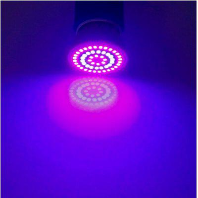 220V SMD 2835 LED Grow Light for Indoor Plant