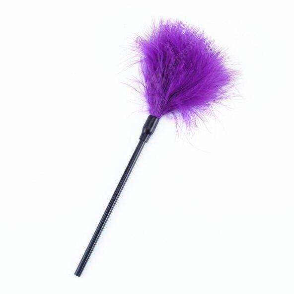 PURPLE Soft Feather Tricky Toys