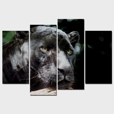 YSDAFEN 4PCS Lion Printing Canvas Wall Decoration