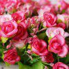 LmDec Artificial Flower with White Pot for Decoration - PINK